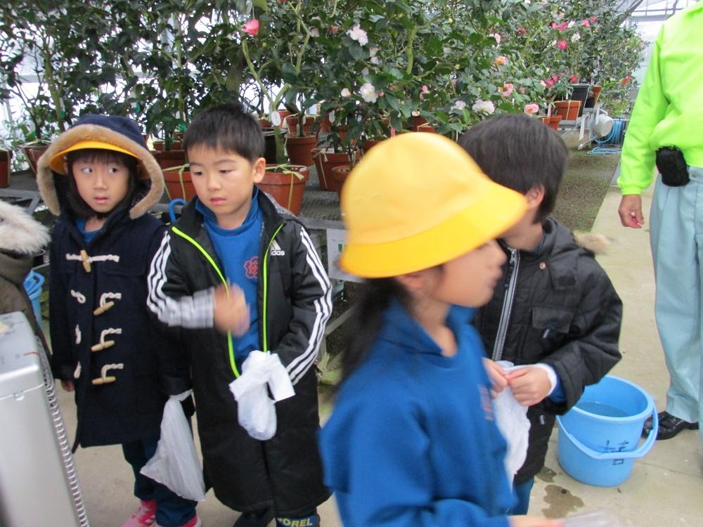 令和元年小学校1年ツバキ学習 (9)